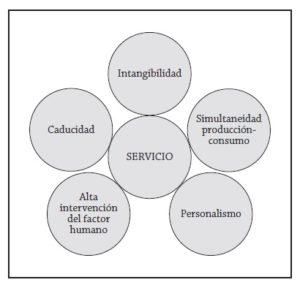 mkt servicios características